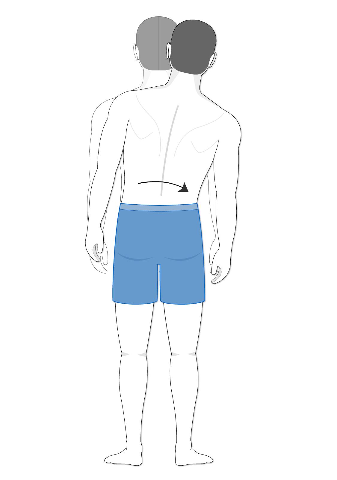 Lateral flexion of the vertebral column